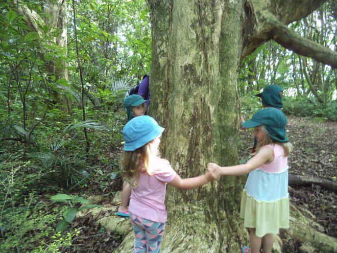 Kinderen Daycare Centre Forest Trip